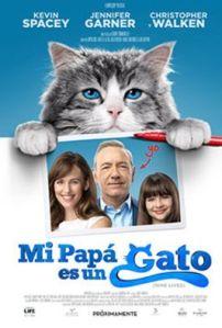 papa-es-un-gato